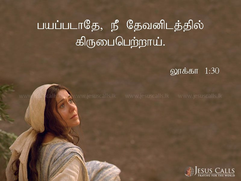 Pin On Holy Bible Tamil