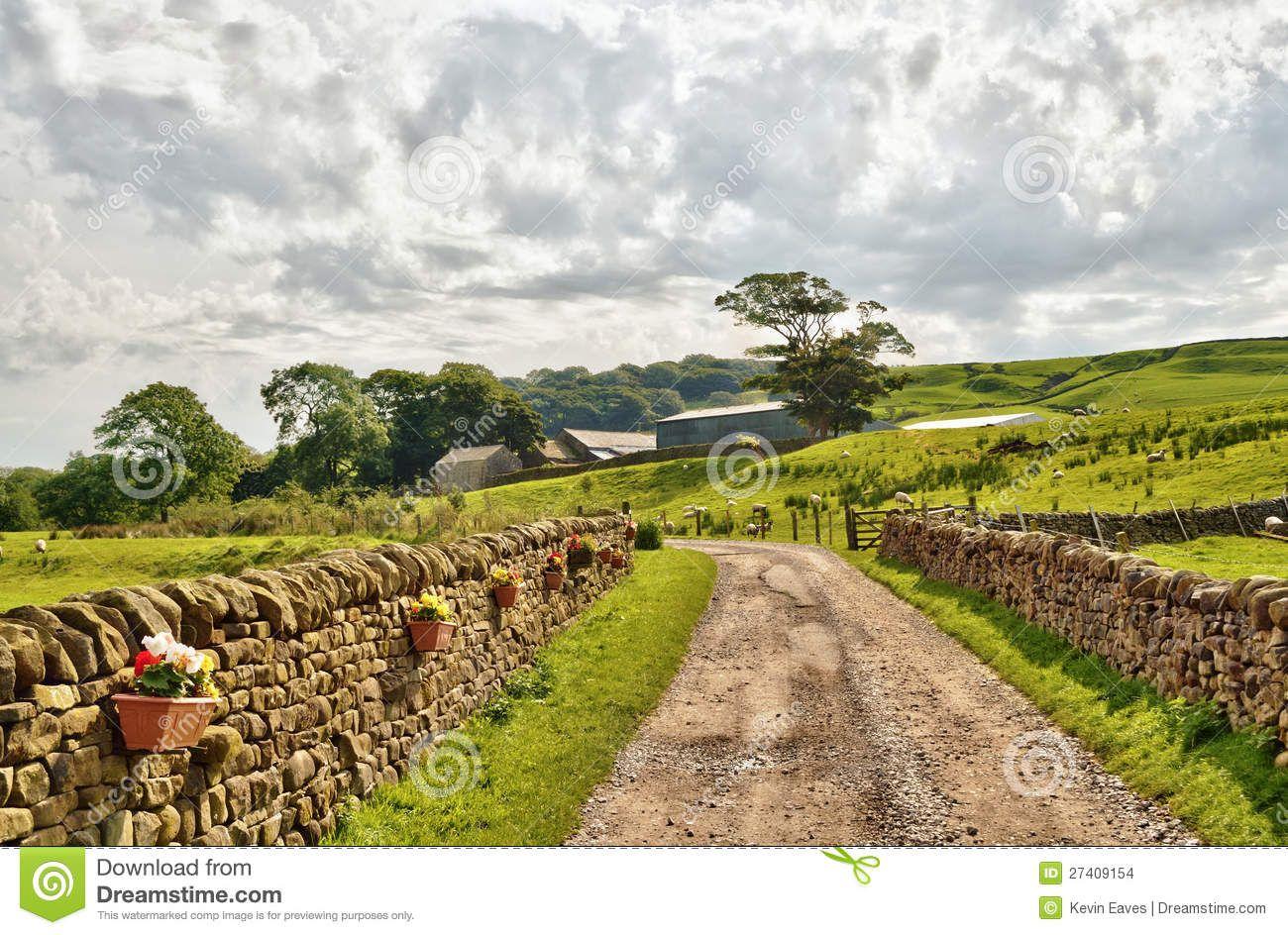 country-lane-bordered-stone-walls-fields-27409154.jpg (1300×944)