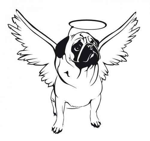 Pug Angle Pug Tattoo Puppy Coloring Pages Pug Art