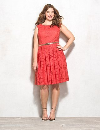 roz & ALI™ Plus Size Lace Fit-and-Flare Dress | For my Girls Only ...