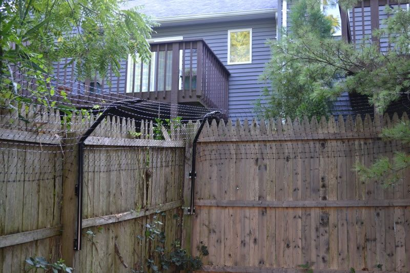Dog Fence Extension System To Stop Climbing Dogs