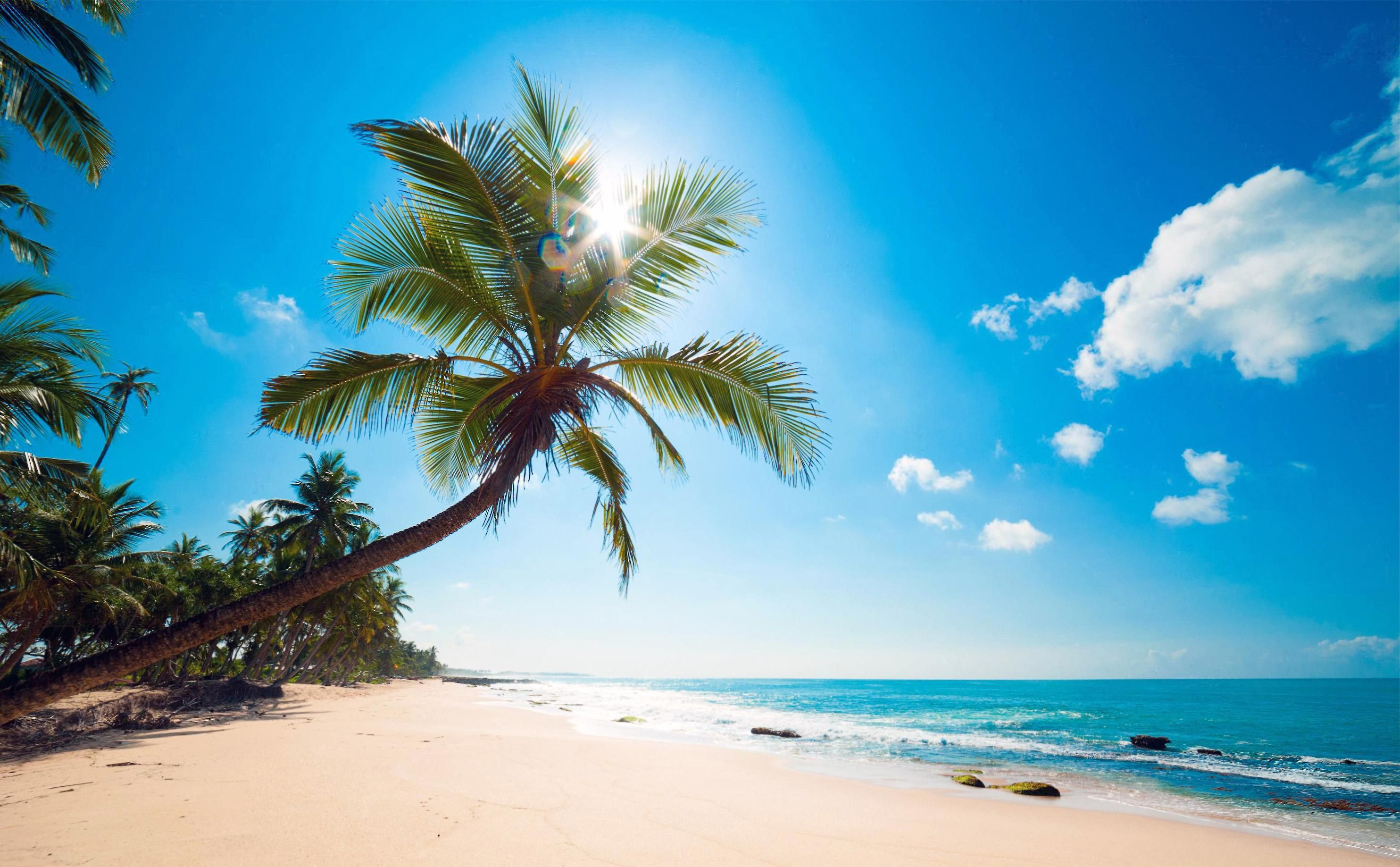 Sunny Beach Hd Wallpapers Hd Wallpapers Fit Beach Wall Murals Beach Wallpaper Caribbean Beaches