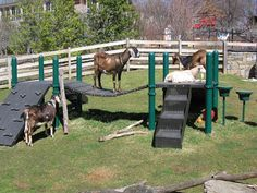 Goat Playground Ideas Pallet Playhouse