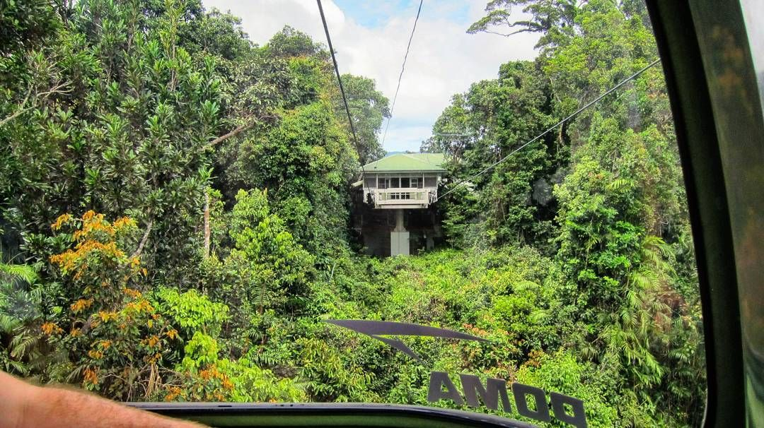#OldPhotos #ViewThroughTheWindow #ViewFromTheCableCar #Kuranda #SkyrailRainforestCableway #Cairns #Queensland #Australia #Y2011