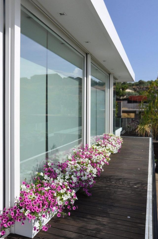 Balkon Deko Pflanzen Kubel Reihe Zierleiste Blumen Idee Balcony