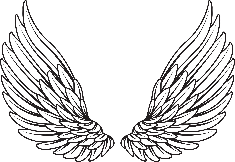 Line Drawing Wings : Wings vector element mkimxn d g Рисунки