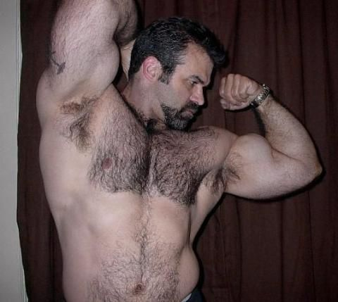 Daddy hairy armpit lick download guys