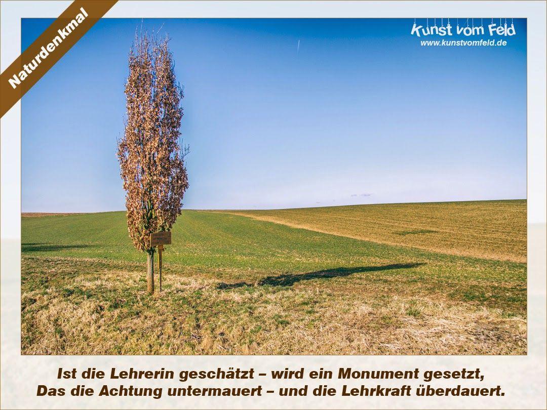 Kunst vom Feld: Naturdenkmal – www.kunstvomfeld.de