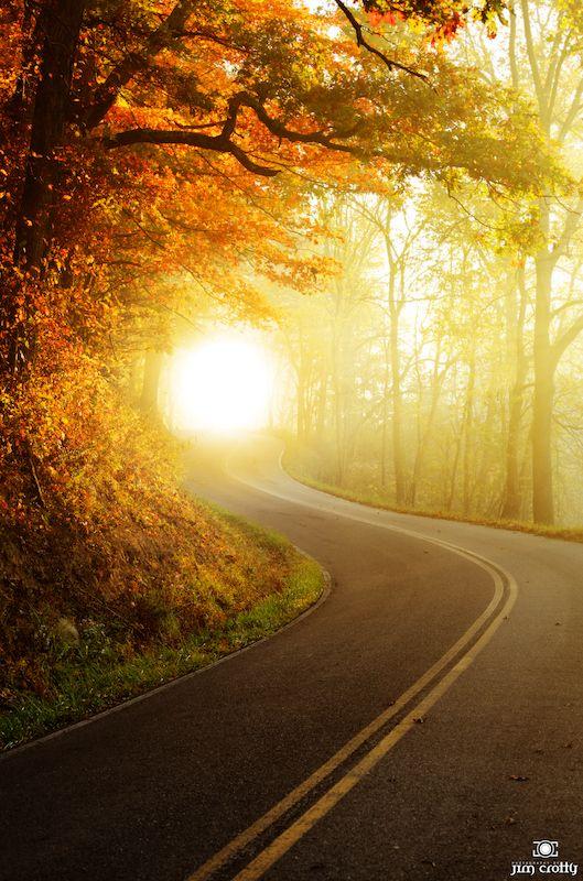 From Jim Crotty: Morning light along Ilesboro Road in Hocking Hills, Ohio