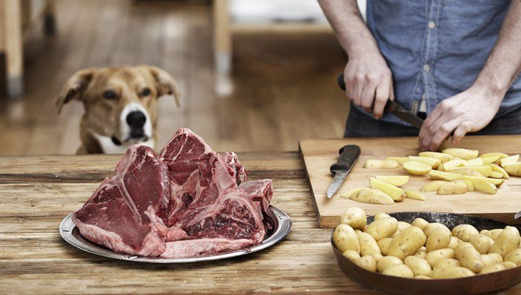 Can Dogs Eat Potatoes? Are Potatoes Safe For Dogs   Food ...