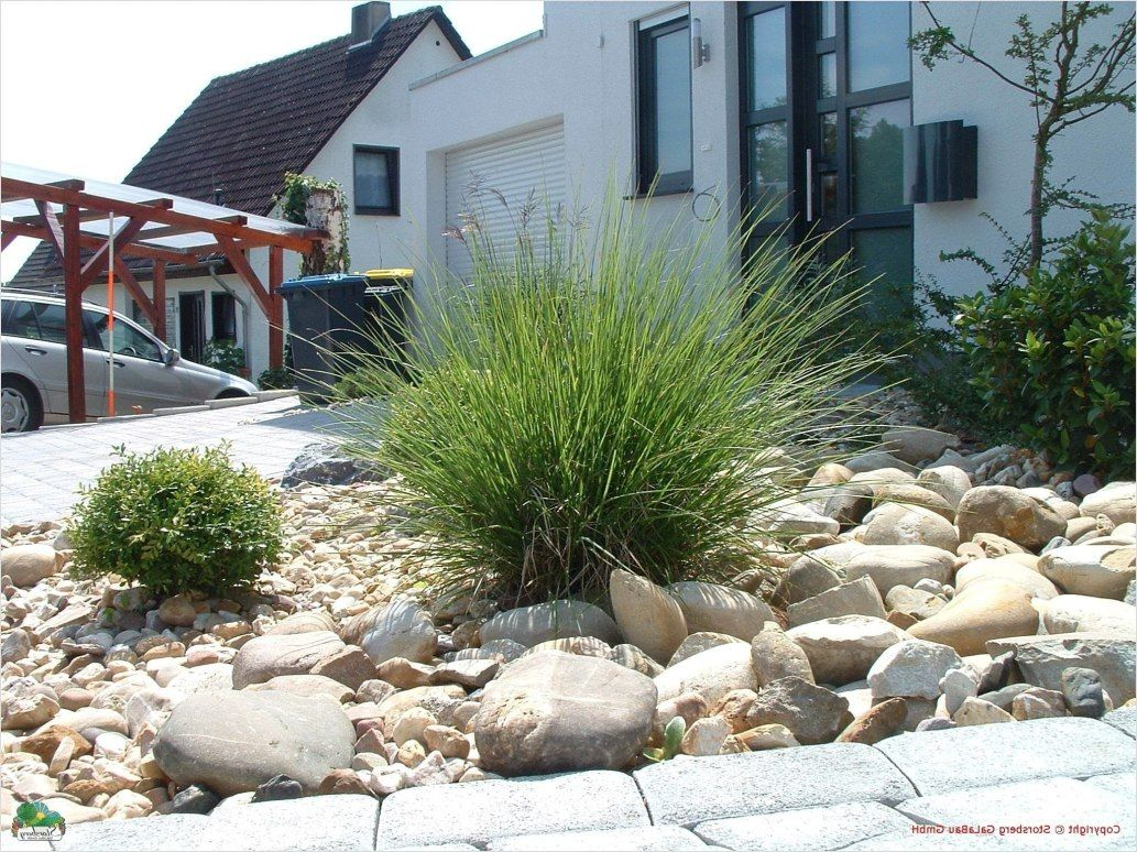 Steine Fur Garten Gunstig Kaufen Sieht Nach Pinterest Stehlen Von Dekorationen Stilvolle Steine Fur Garten Gunstig Stein Gartengestaltung Vorgarten Bepflanzung