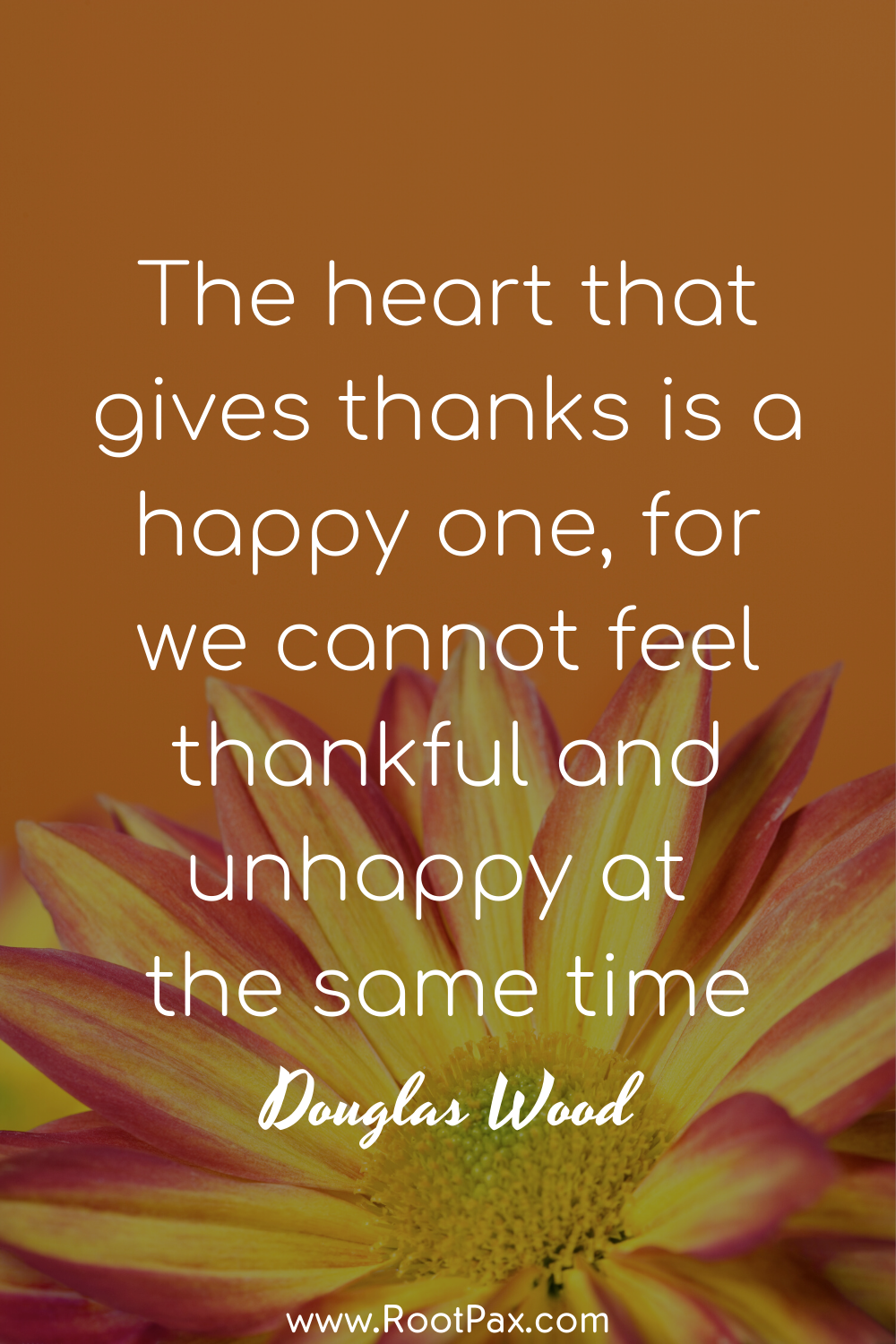 43+ Thankful and grateful quotes ideas in 2021