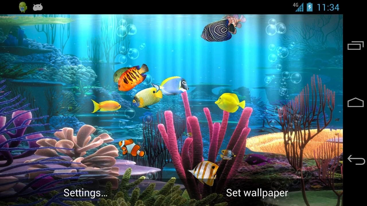 Fish Aquarium Free Android Apps on Google Play