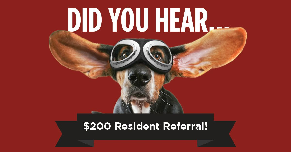 Double Referral Bloomington Dog Runs Two Bedroom Apartments