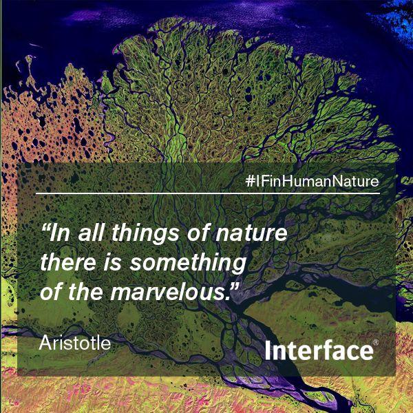 Aristotle Quote Nature Human Nature Nature Nature Inspired Design