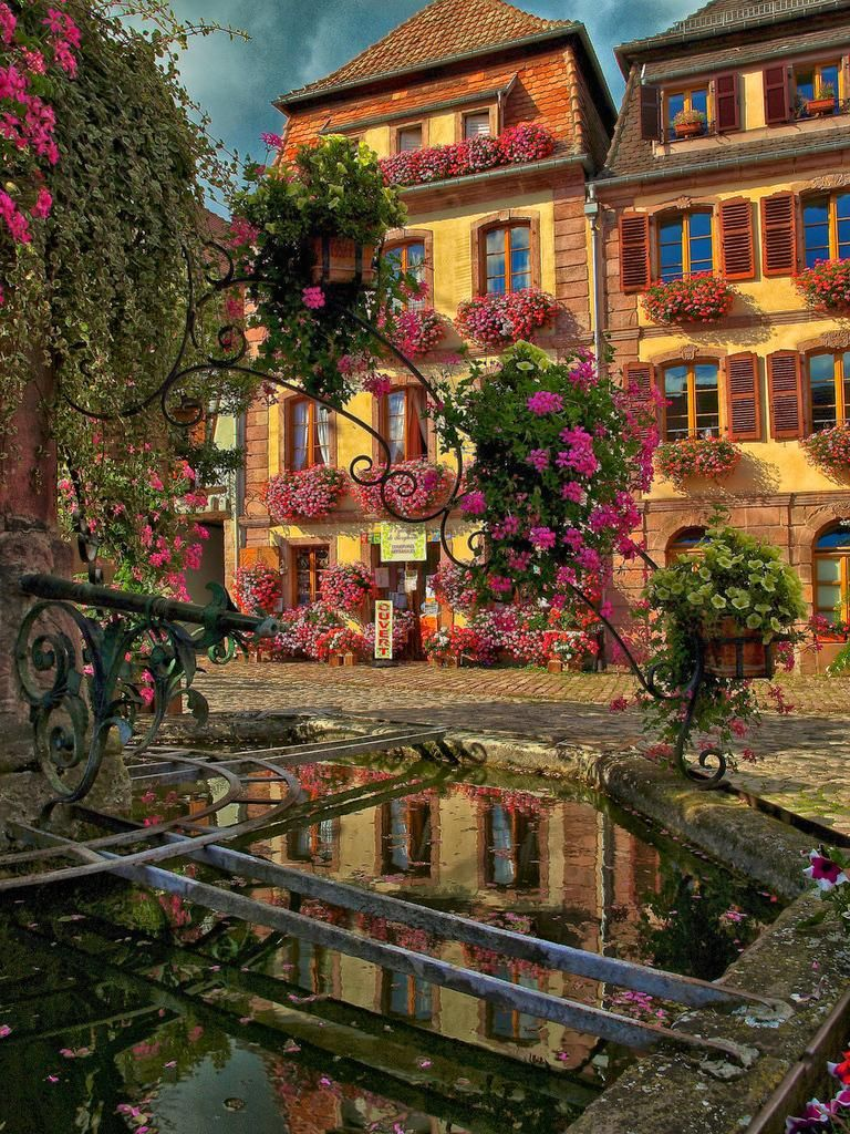 Bergheim, Alsace, France - Bergheim is a commune in the Haut-Rhin department in Alsace in north-eastern France. It is a completely fortified town