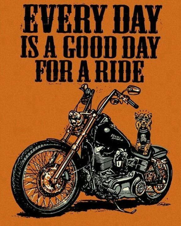 True Story.. BIKE STUFF Pinterest Motorcycle quotes