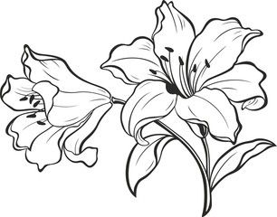 35+ Shoulder Clipart Black And White