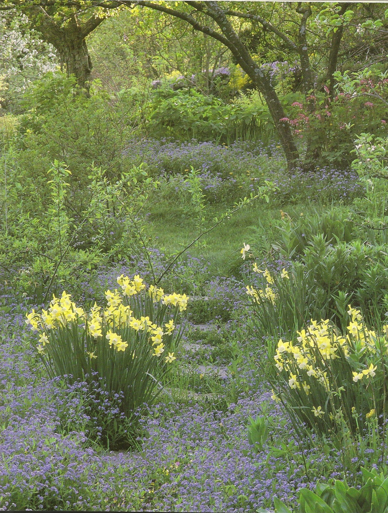 Blumenwiese Englisch tudor garten es gibt etwas über die schönheit eines