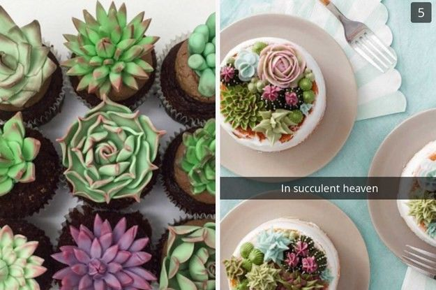 16 Cakes That Will Deeply Satisfy Anyone Obsessed With Succulents BuzzFeed