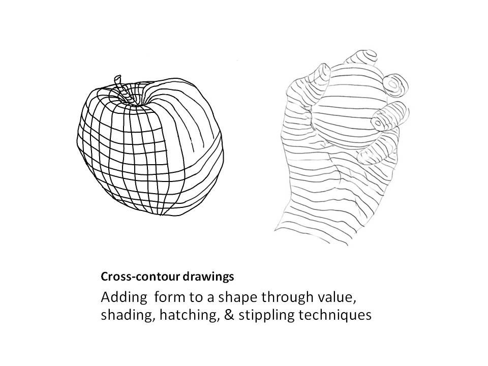Cross Contour Line Drawing Lesson : Cross contour drawings more projects for high school