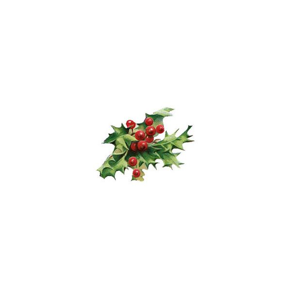 Free Christmas Clipart From ChristmasGifts Liked On Polyvore Featuring Home Decor