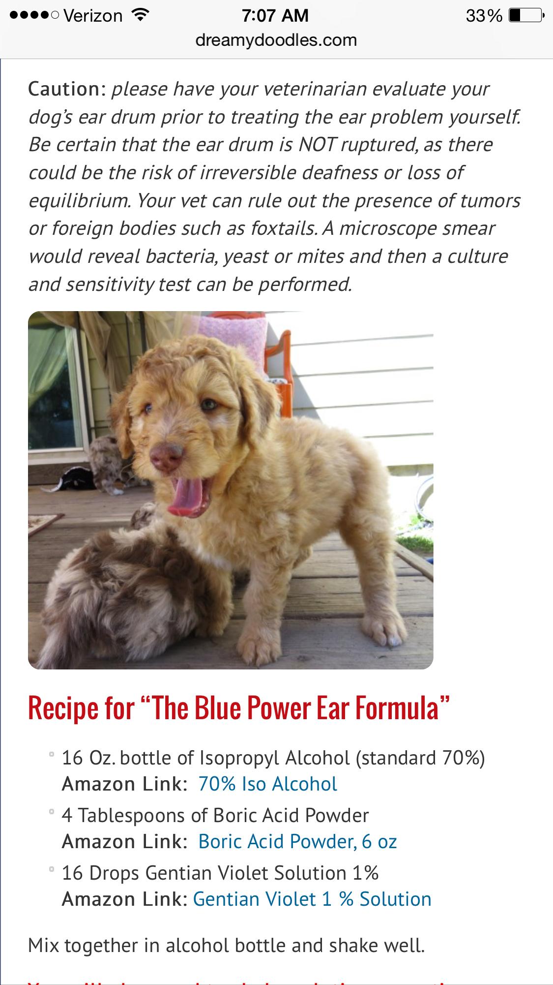 Homemade Diy Dog Ear Cleaner Solution Dog Ear Cleaner Diy