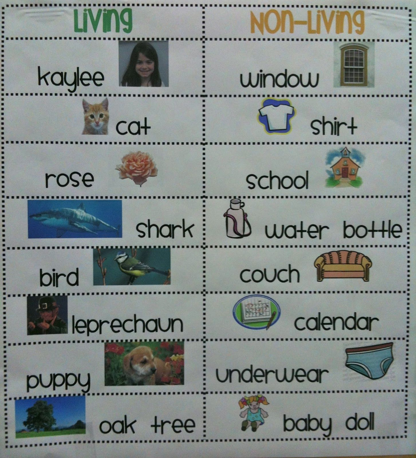 Shape Graph Kindergarten
