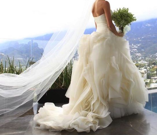 New Sample And Used Vera Wang Wedding Dresses For Sale At Amazing Prices Browse Our Gowns Find Your Dream Dress Less
