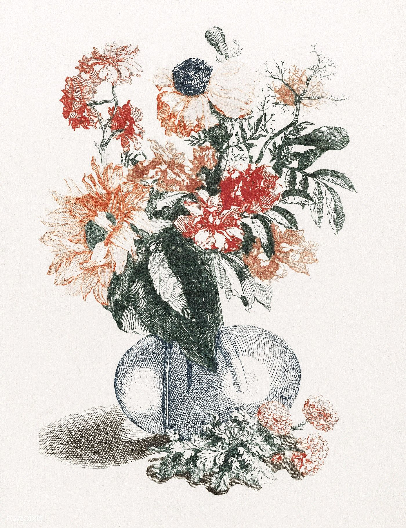 Flowers In A Vase 1688 1698 By Johan Teyler 1648 1709