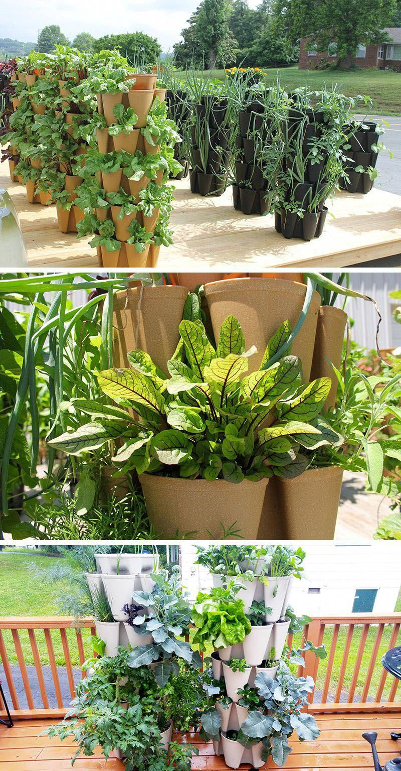 5 Vertical Vegetable Garden Ideas For Beginners / These ...