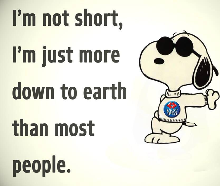 I M Not Short I M Just More Down To Earth Than Most People Funny Quotes Snoopy Quotes Cute Quotes