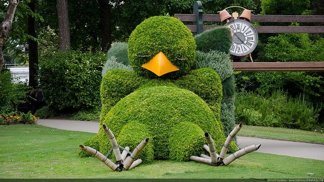 Art Of Gardening: Sleeping Bird Topiary