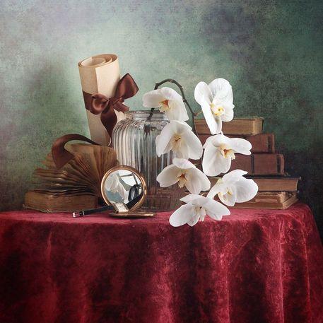 'Weiße Orchidee' von Nikolay Panov bei artflakes.com als Poster oder Kunstdruck $5.94 https://www.artflakes.com/de/products/weisse-orchidee-3
