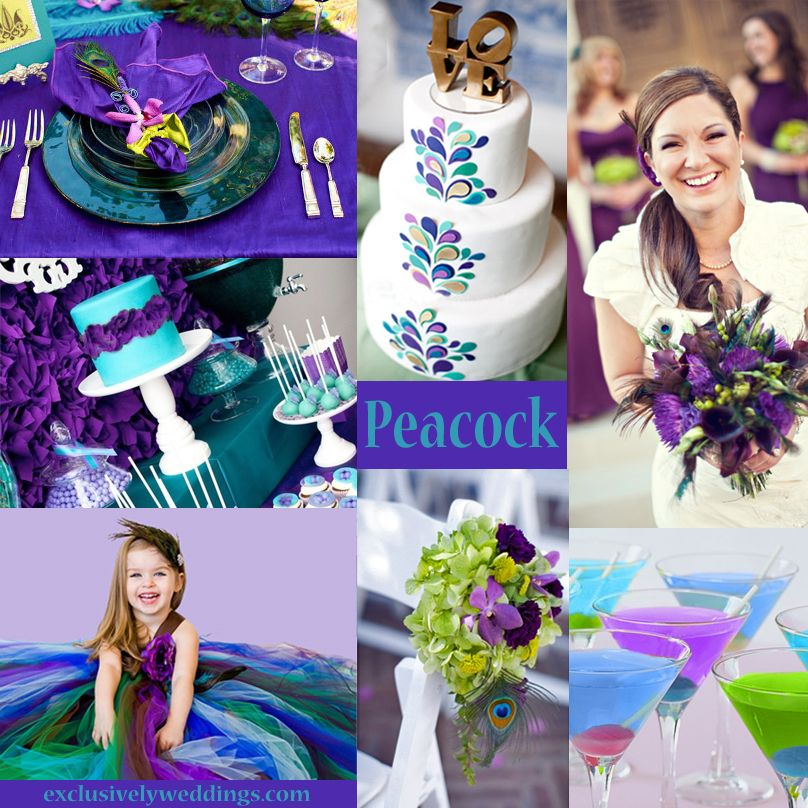 Your Wedding Colors Peacock Exclusively Weddings Wedding Colors Purple Unique Wedding Colors Wedding Color Combinations