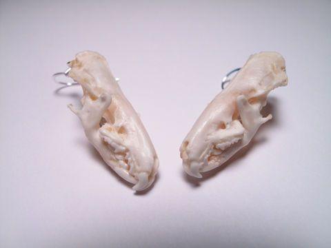 Bone Earrings - Articulated Vertebrae Earrings - Bone Jewelry