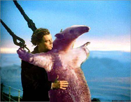 392eda728dd45f7696113d2f052f2d6d fuck you, i'm an anteater,Anteater Meme Generator