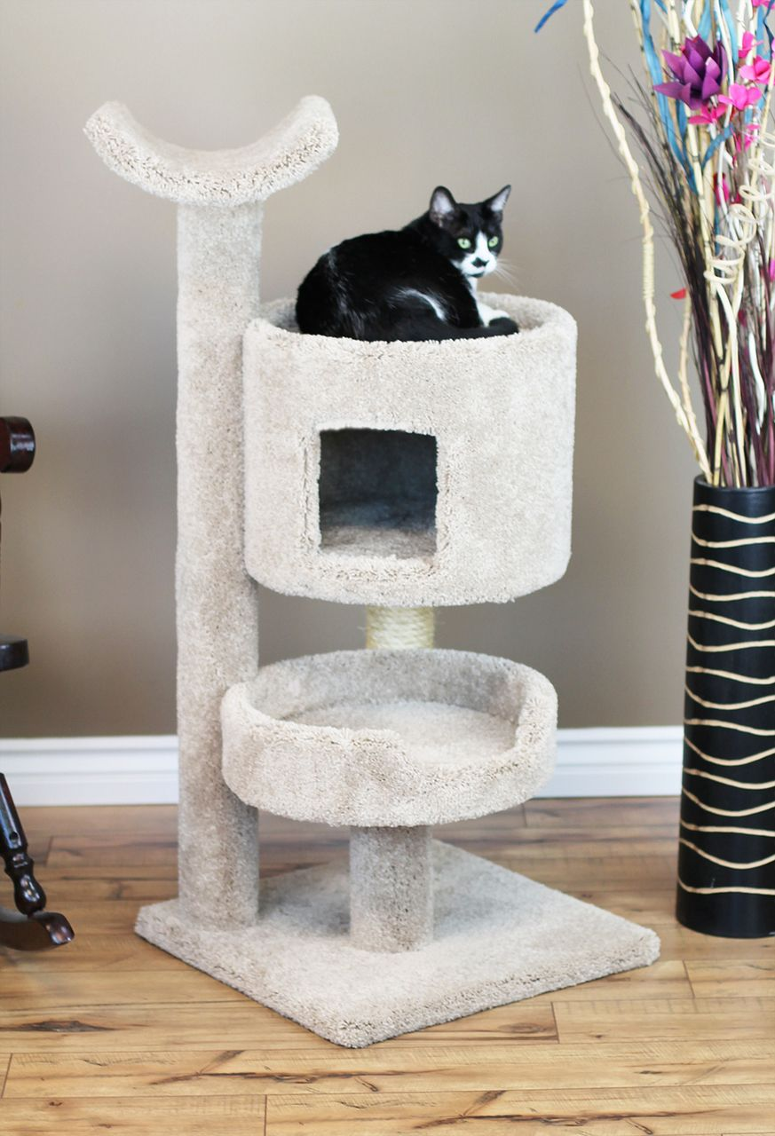 Premier Cat Bungalow Cat Tree Cat condo, Cat tree, Cat