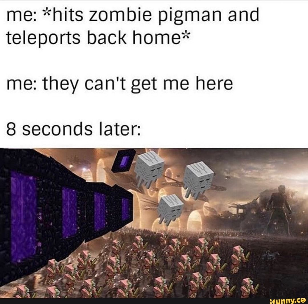 Me Hits Zombie Pigman And Teleports Back Homeª º Me They Can