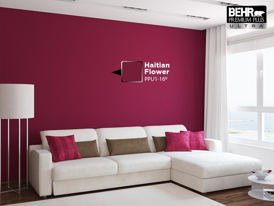 Para cambios de color dr sticos la nueva behr premium - Como pintar una pared ya pintada ...