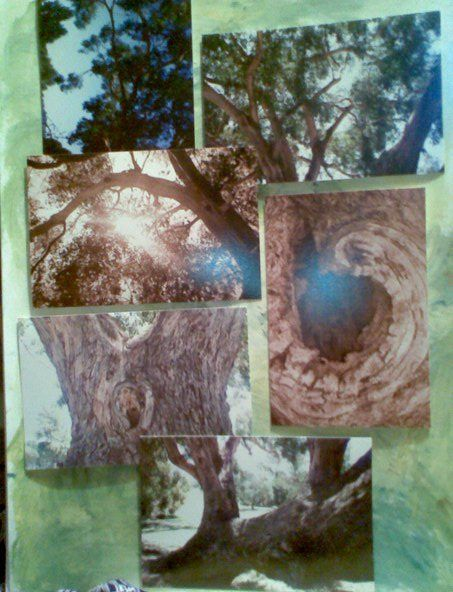My art work  Photography  Tree