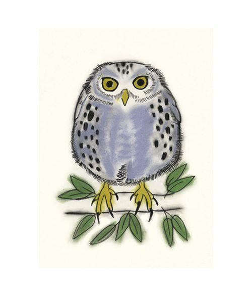 Owl art print. A little blue owl called Freddy.