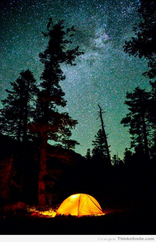 Some Of My Favorite Things Camping In The Woods Under Stars I Could Sit All Night And Just Look At Thinkhow Beautiful