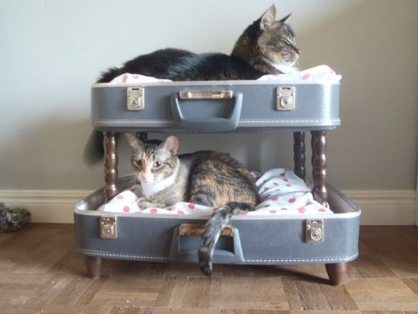 DIY Cat bunk bed made from a retro hard-shell suitcase.