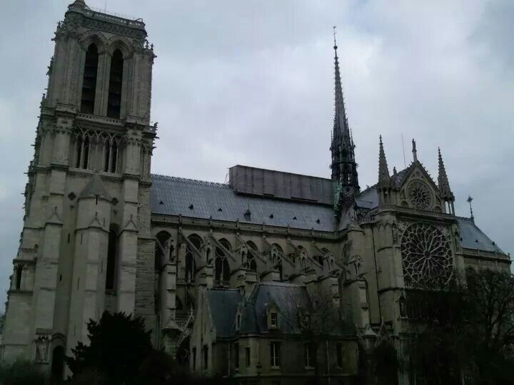 Notre Dame. Side view