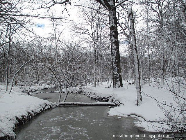 Mark Dice: I ❤️ China! #mortongrove Frozen creek in Morton Grove, Illinois after a March snowstorm #mortongrove