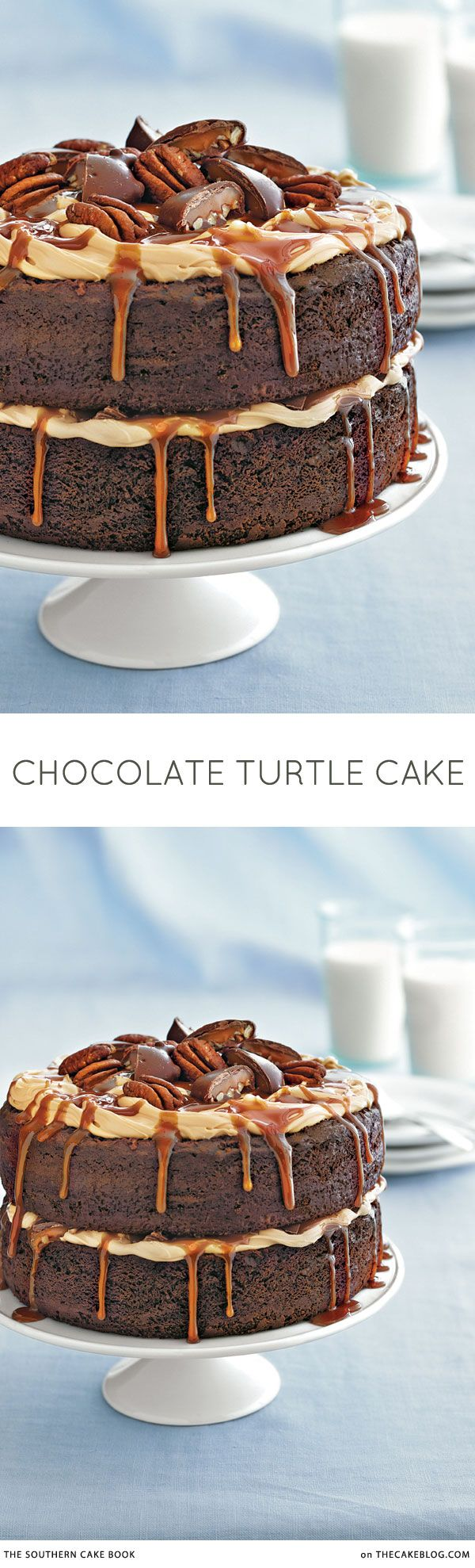 chocolate, caramel and pecans   Chocolate Turtle Cake Recipe   from The Southern Cake Book by Southern Living on TheCakeBlog.com