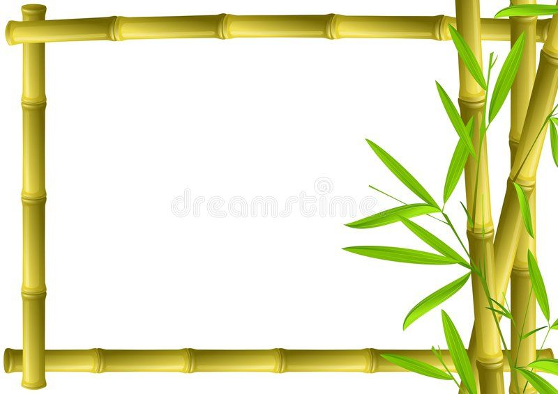 Bamboo Frame Brown Bamboo Frame Isolated On White Affiliate Brown Frame Bamboo White Isolated Ad Bamboo Frame Bamboo Background Frame