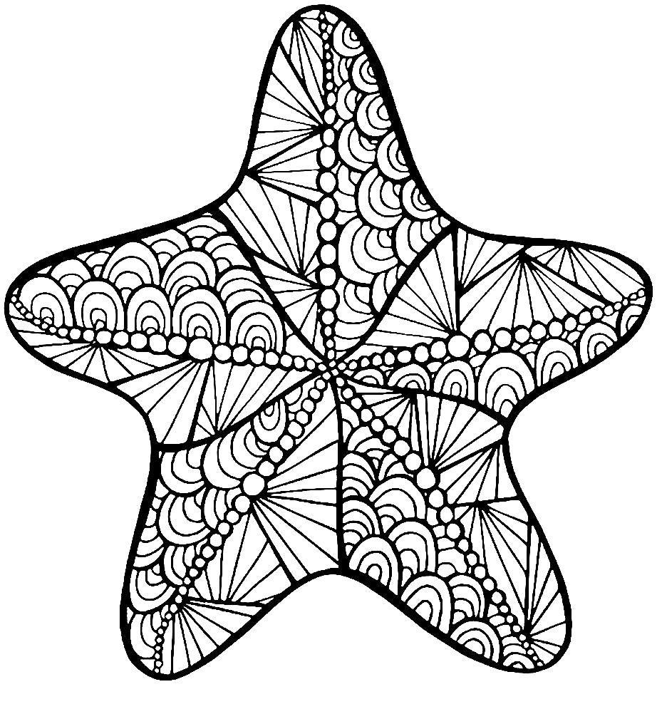 Раскраска Морская звезда. Скачать узоры. Распечатать ...