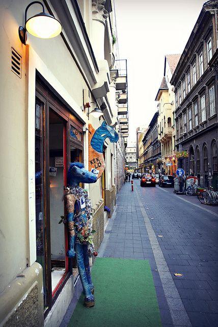 Blue Horse | Flickr - Photo Sharing!